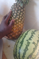 this massive pineapple