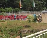 Impressive piece of Grafitti