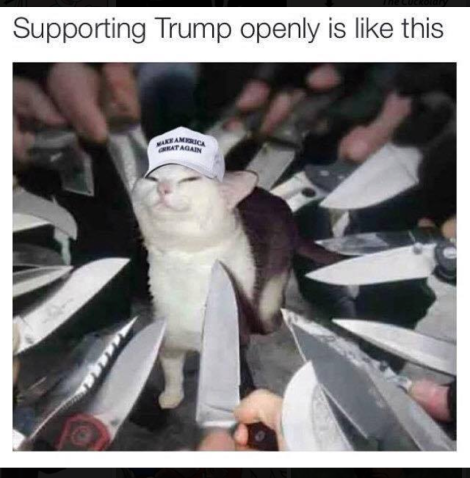 supportigntrump.rantatonne