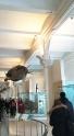 nat-history-museum-turtles-rantatonne3